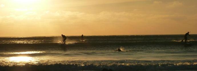 paddleboarding sunset banner