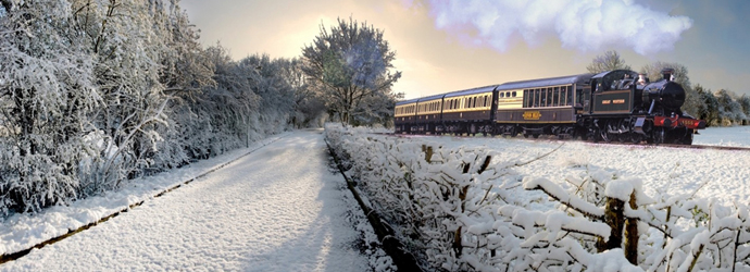 winter train banner