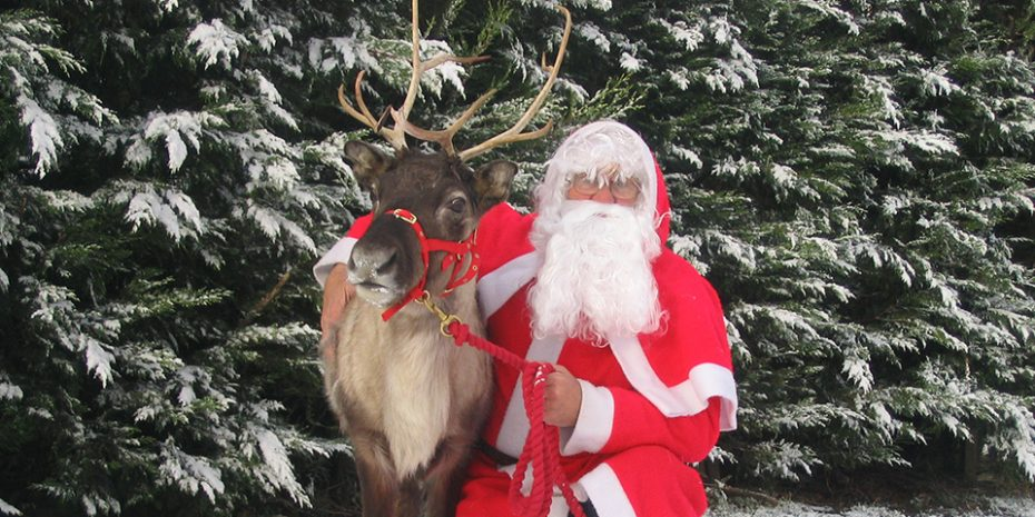 Santa and his reindeer at Pennywell