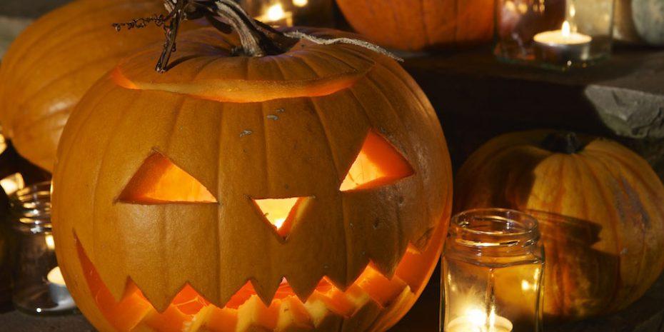 Holidays in October Half Term