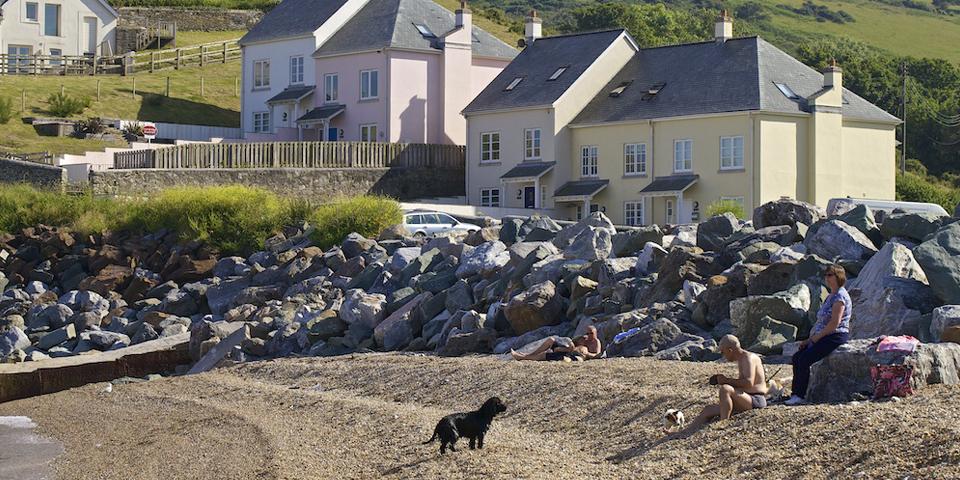 Pet friendly accommodation - Fulmar