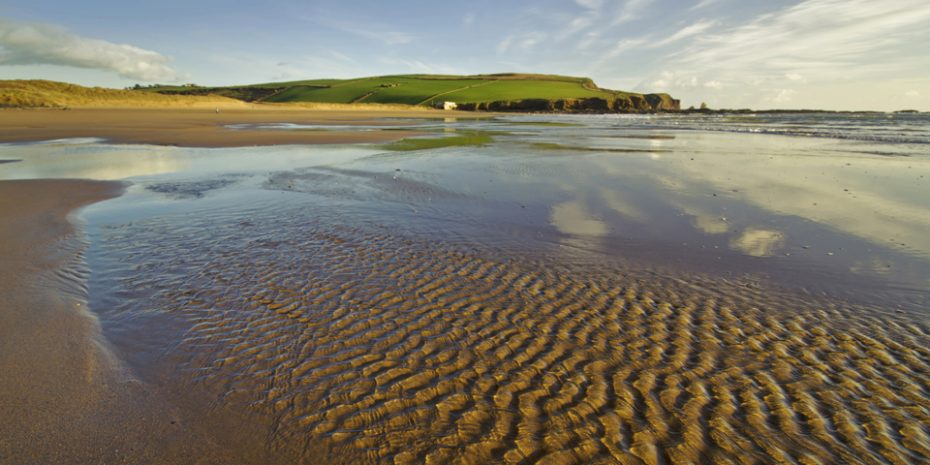 Dog friendly beaches - Bantham