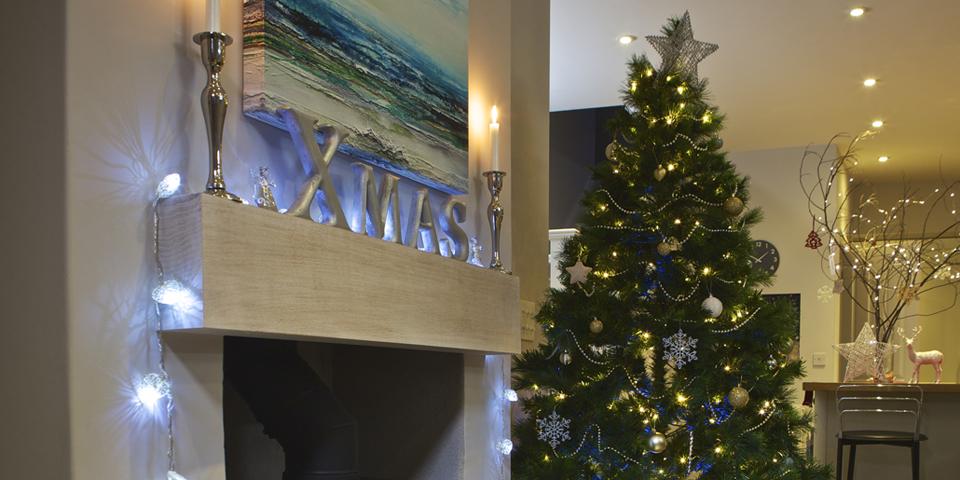 Christmas Breaks in Devon - Tree