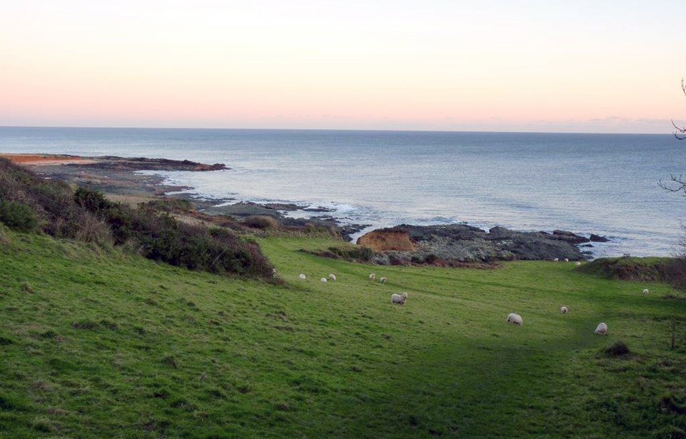 South Devon Walks From Rolling Hills To Rugged Cliffs
