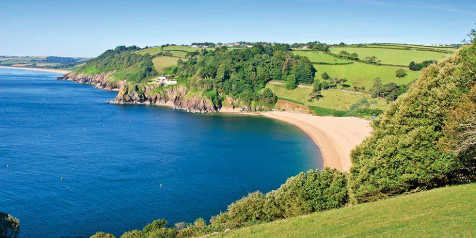Best Dog Walks In South Devon