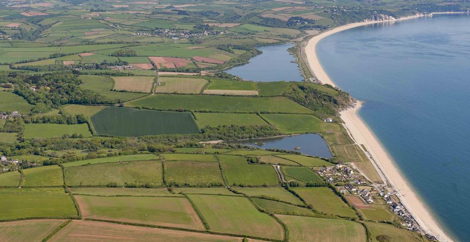 Things to do in Torcross - South Devon walks