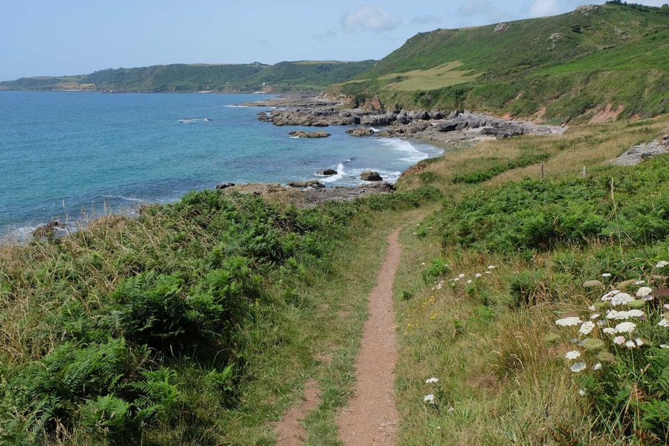 The Coast Path, leading to Mattiscombe Beach