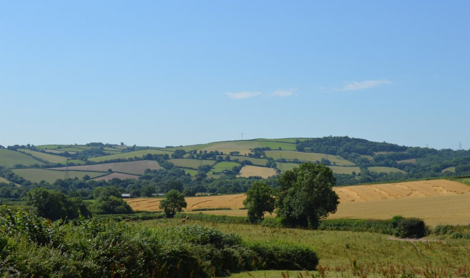 The South Devon countryside