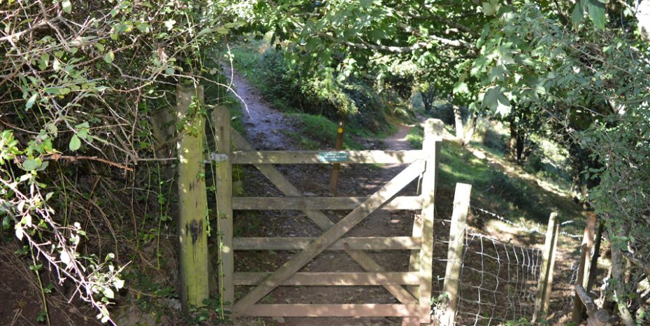 Go through this gate which leads left to Little Dartmouth and right towards Compass Cove