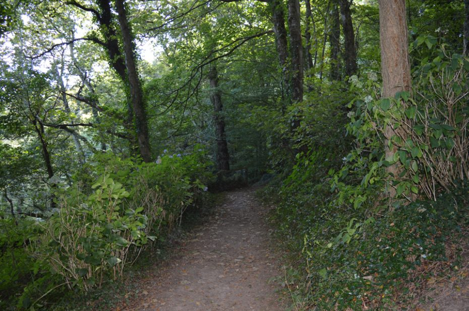 The footpath down to Sugary Cove