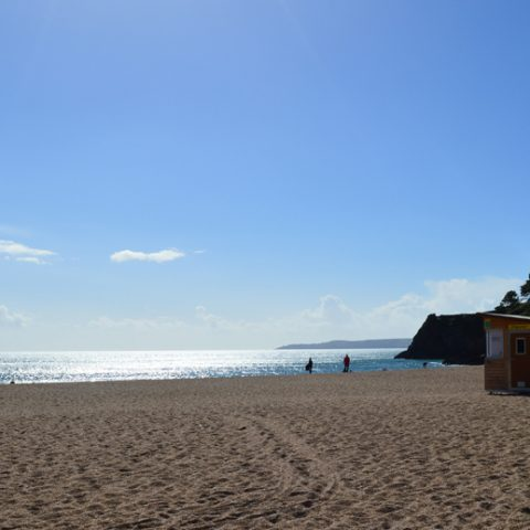 Blackpool Sands is well worth the walk from Dartmouth.