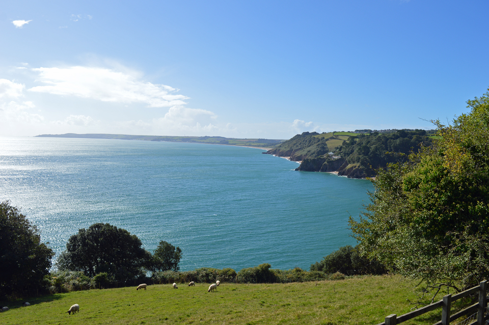 7 Days Of Special South Devon Walks Coast Amp Country Cottages