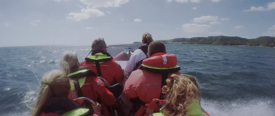 A rib ride off Salcombe