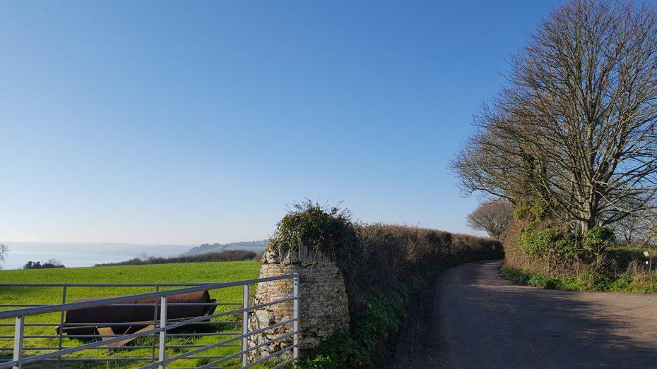 Walks from Stoke Fleming