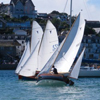 Salcombe Yawls on the water