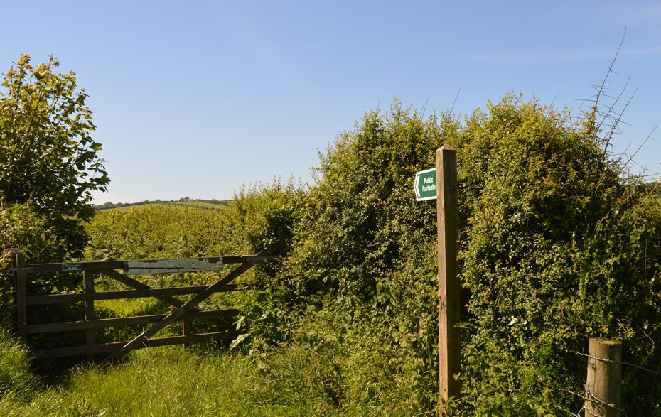 An overgrown trail between Beesands and Hallsands