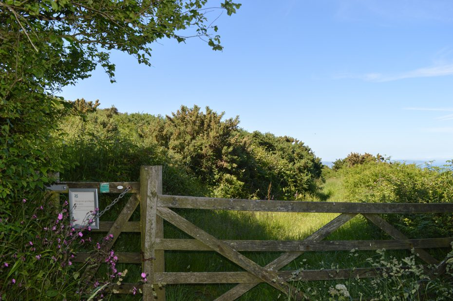 Go through the gate towards Beesands