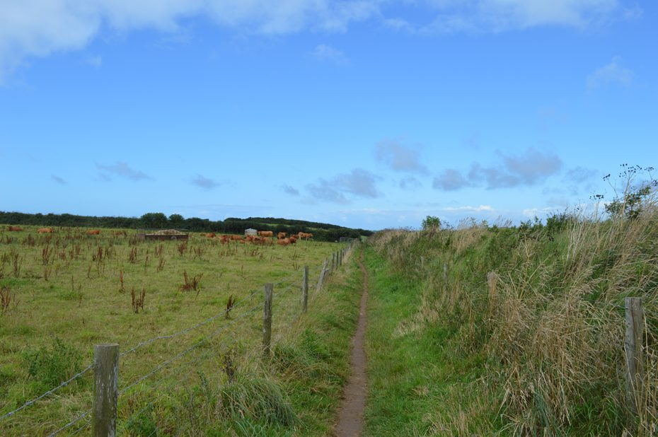 Trail towards Mill Bay National Trust Car Park