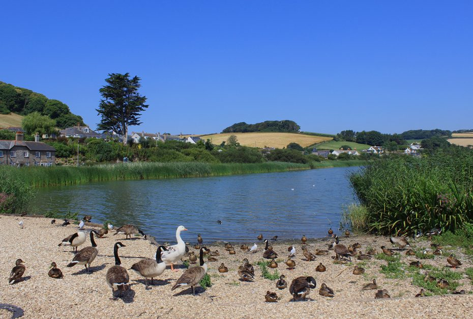 Slapton Ley National Nature Reserve