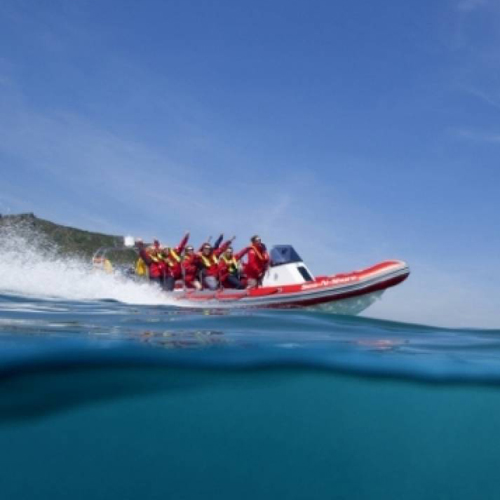 Rib riding with Sea 'n' Shore Salcombe