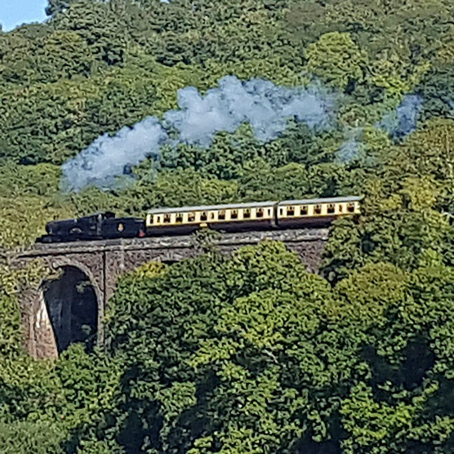 The steam train running alongside the River Dart from Kingswear
