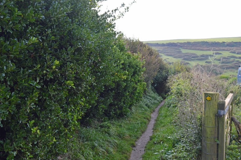 A footpath past the Sloop Inn, which leads towards Thurlestone village.