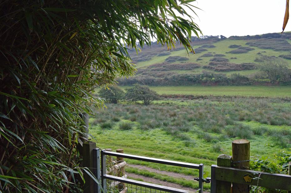 Thurlestone To Bantham Circular South Devon Walks