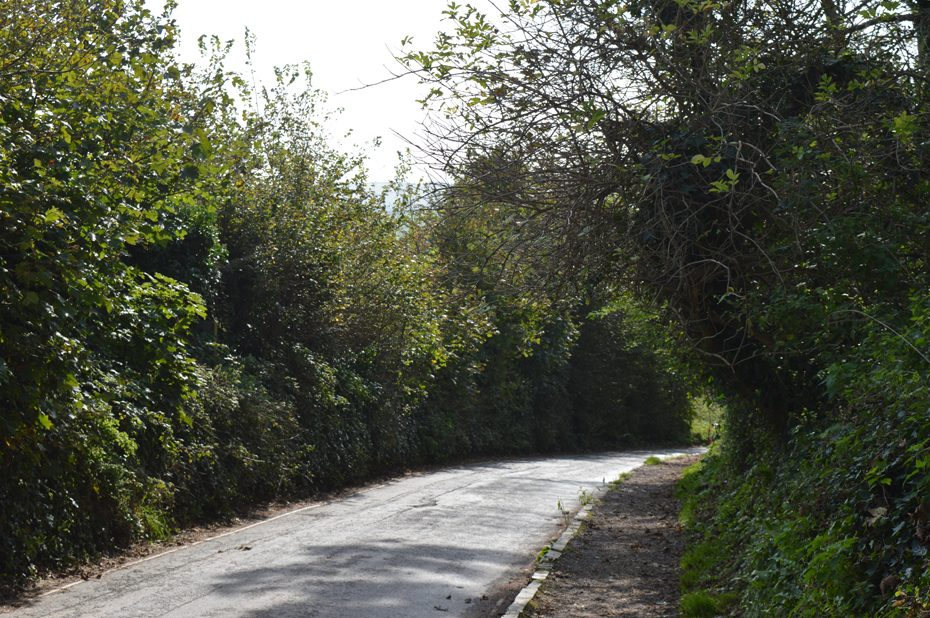 The main road into Thurlestone.