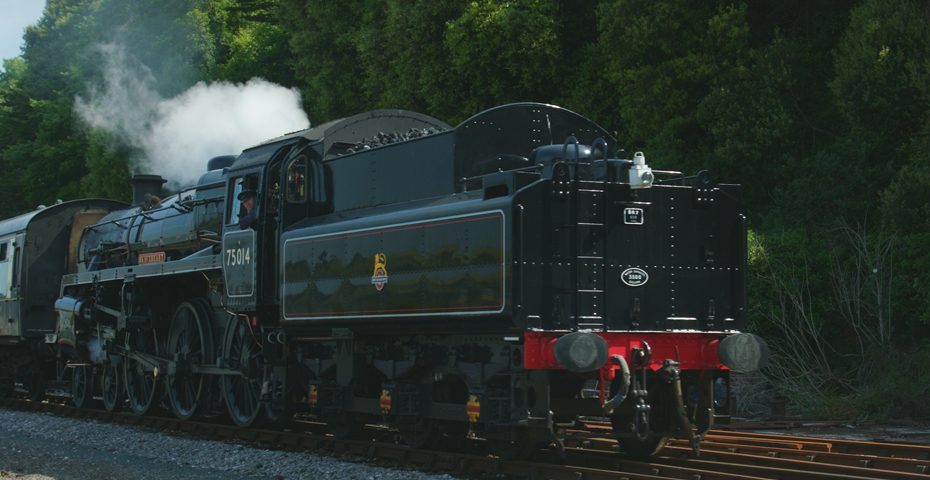 64 family attractions Dartmouth Steam Railway