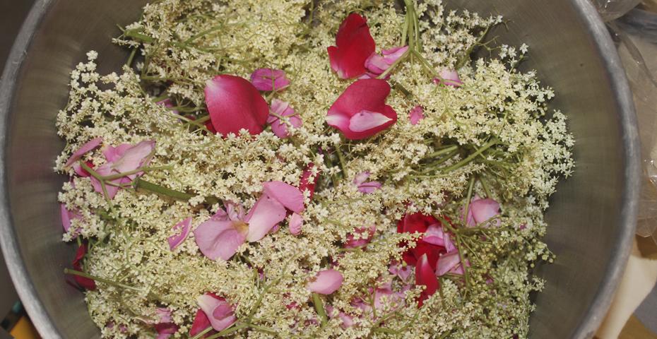 Elderflower and rose petal cordial