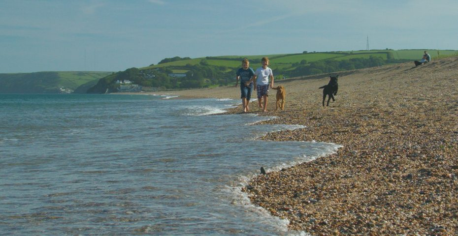 dog-friendly beaches