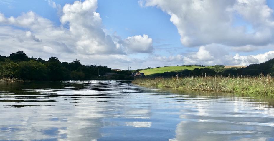 Wild swimming in South Devon - The River Avon