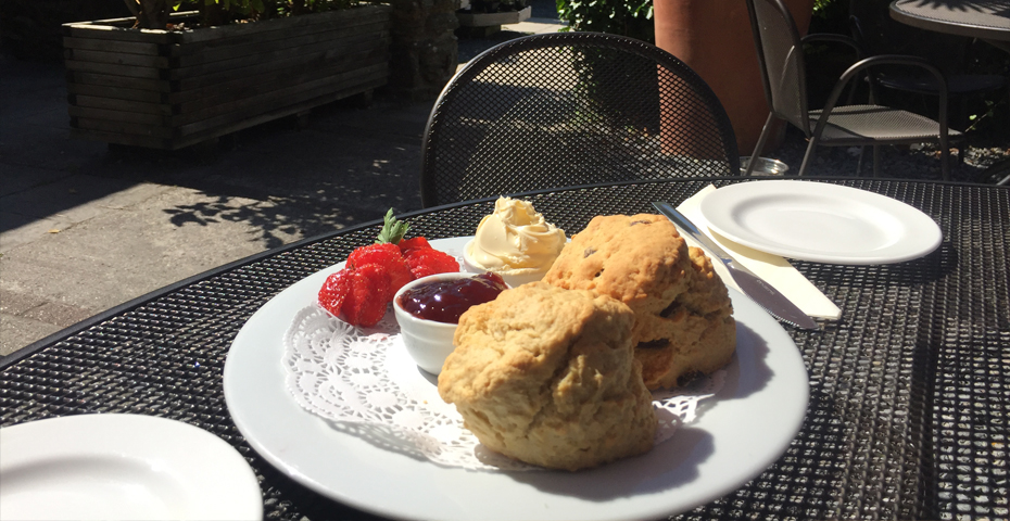 Free things to do in South Devon scone