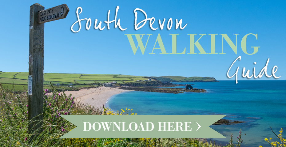 South Devon Walking Guide donwload