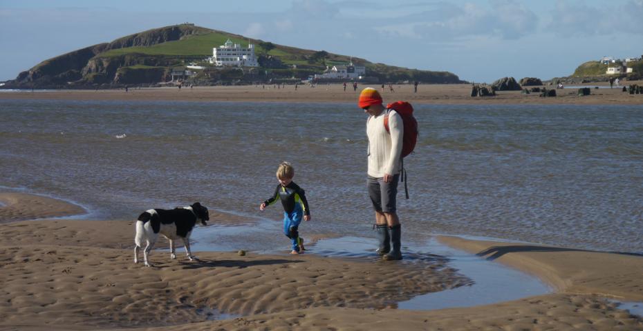 Bantham Beach - is Bantham Beach dog friendly?