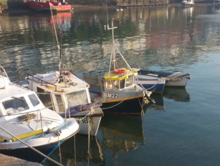 Brixham South Devon village guide _feature image