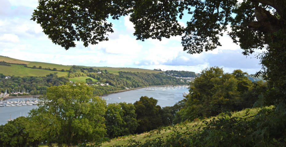 Dartmouth to Dittisham walk - View of the Dart from hills towards South Pool Creek