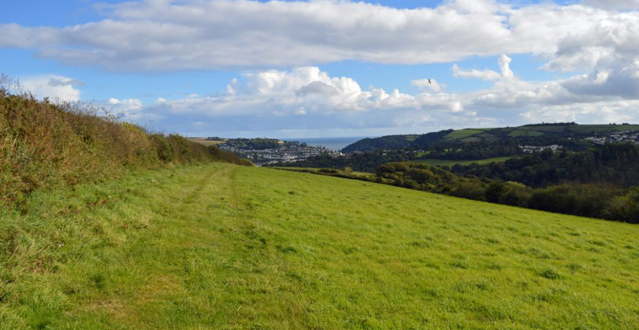 Dartmouth to Dittisham walk -across the field towards Dartmouth