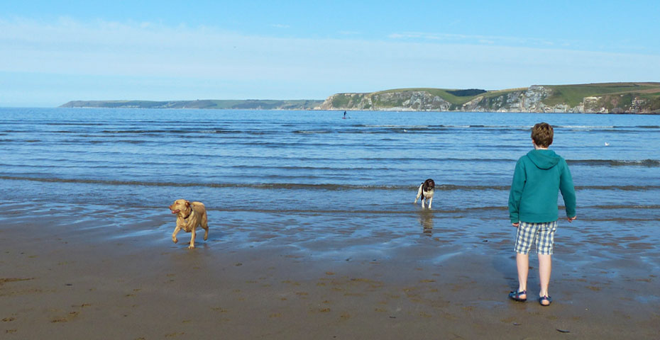 Dog friendly beaches in South Devon - Bigbury-on-Sea