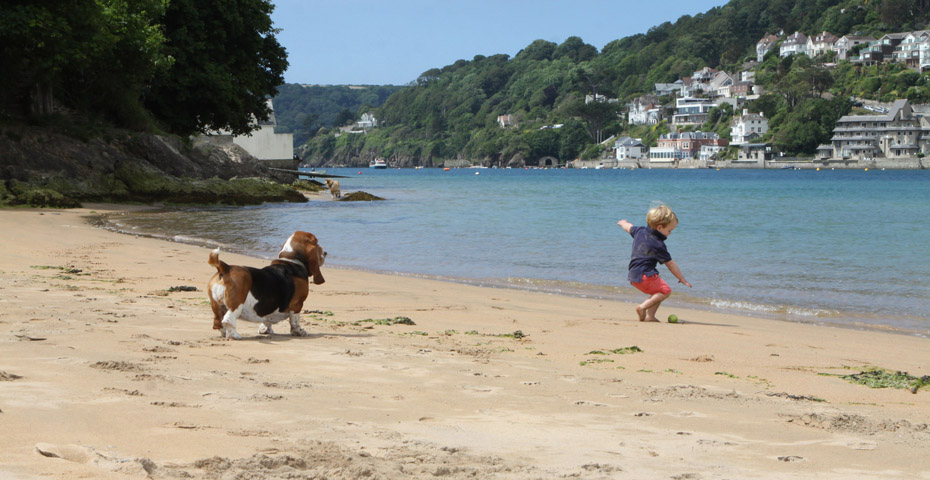 Dog-friendly beaches in South Devon - East Portlemouth