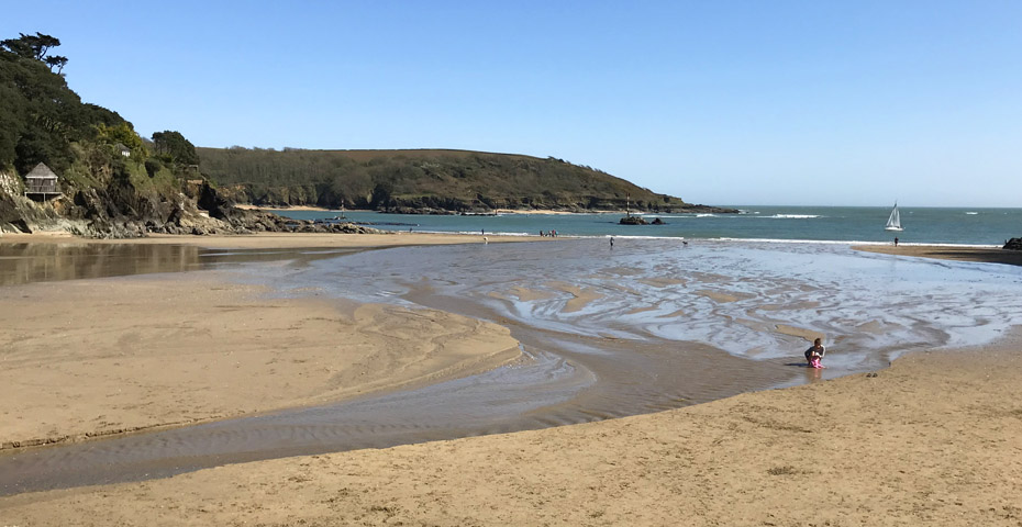 Dog-friendly beaches in South Devon - North Sands