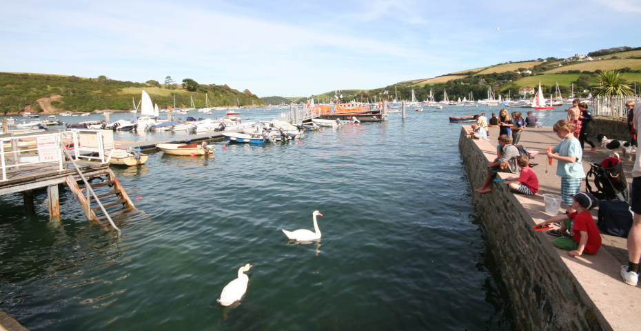 Things to do in Salcombe_Crabbing