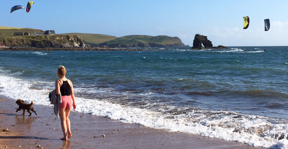 Dog-friendly beaches in South Devon - Thurlestone