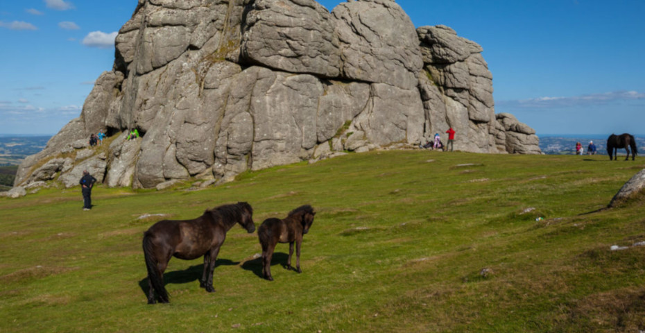 Things to do in South Devon_dartmoor