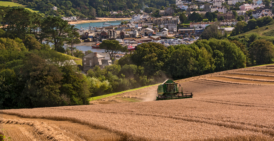 What to do in South Devon - farmers market