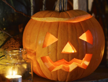 October half term in South Devon - pumpkin carving at Riverford