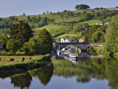 Things to do in Totnes - Totnes town