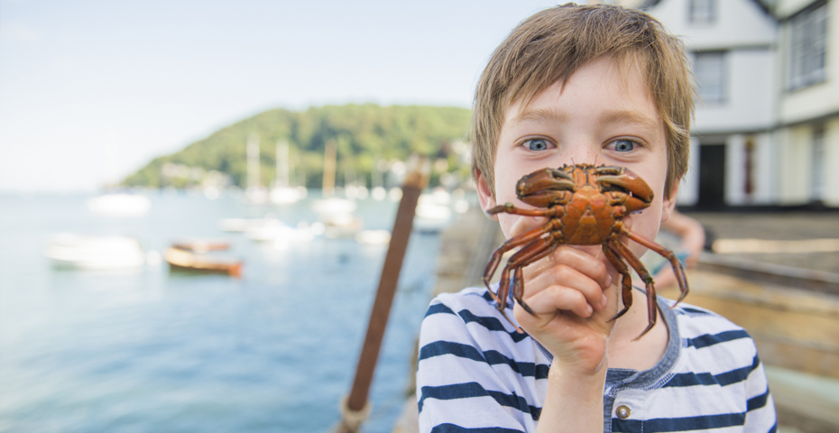 Free things to do in South Devon-crabbing