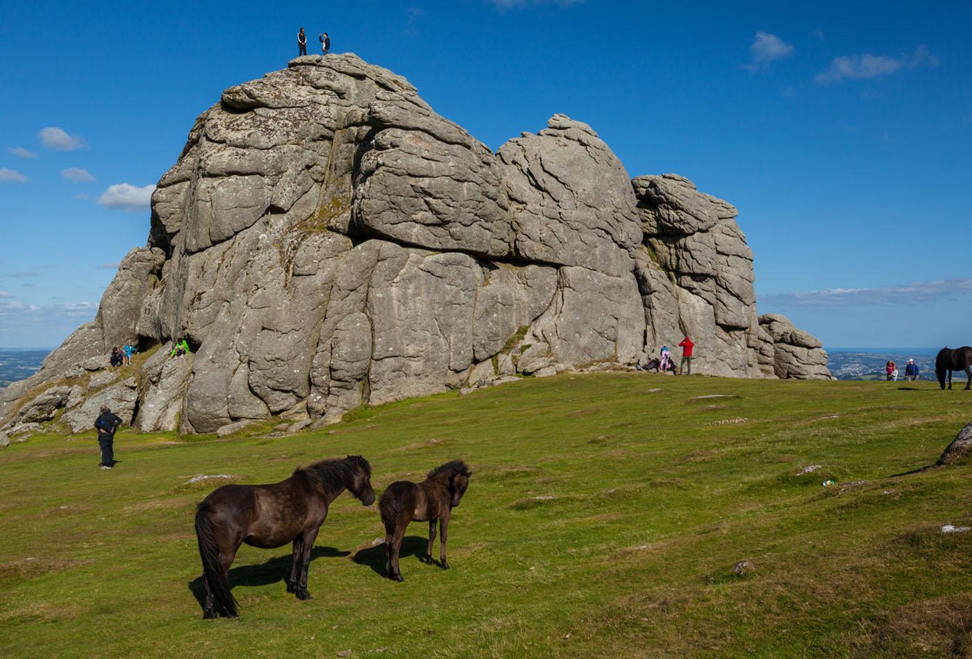 Dartmoor walks at Haytor