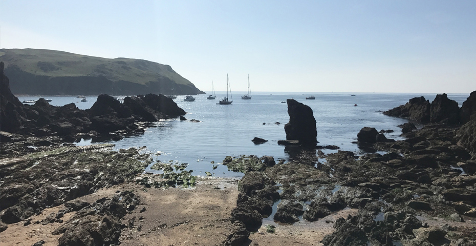 Hope Cove Beaches - Mouthwell Sands rockpools Hope Cove